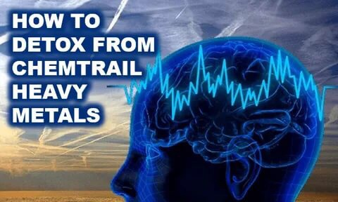 Detoxifying from Chemtrails. Health. 36 FOODS THAT HELP DETOX AND CLEANSE YOUR ENTIREBODY